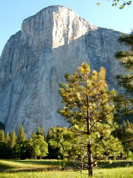 The dominant feature of Yosemite is El Capitan, a 3,000 foot hunk of granite that has become home for hundreds of climbers several days of the year.