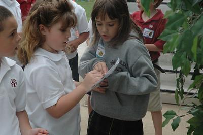 Fourth Grade Bird Festival with First Grade