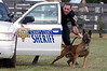 St. Mary's County K-9 Demo :