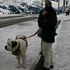 Dog at Kleine Scheidegg