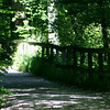 Path by Aare