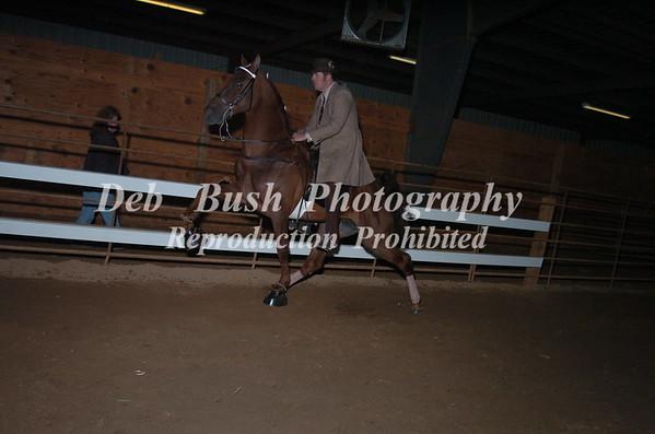 CLASS 26 OPEN WALKING HORSE SPECIALTY