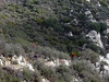 2007-12-01 - Condor Peak Trail OTB Ride