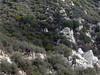 2007-12-01 - Condor Peak Trail OTB Ride
