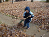 Aidan helping me (mom) rake leaves.
