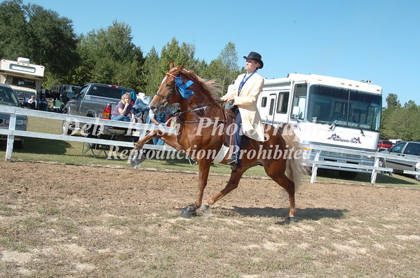 CLASS 12 WALKING 4 YR OLD AMATEUR SPECIALTY