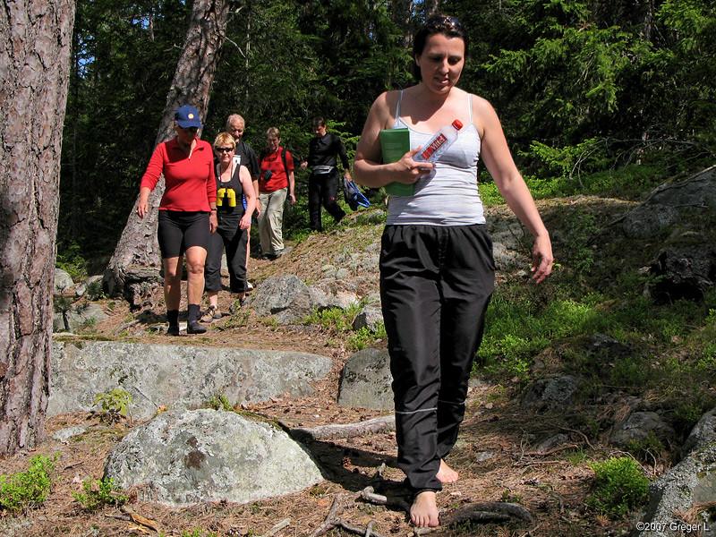 Inte bara ängsmark och fuktängar, utan också torr skogsmark på Ängsö
