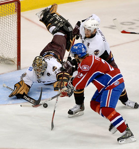 AHL Calder Cup Hockey