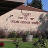 12 Robin's Israel Trip