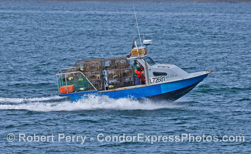 vessel Radon & lobster traps Panulirus 2007 03-04 SB Channel-c-001