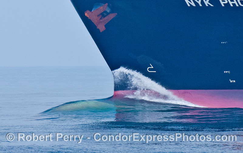 A shear film of turquoise water flows across the submerged bulbous bow of the container cargo vessel NYK Phoenix in the Santa Barbara Channel