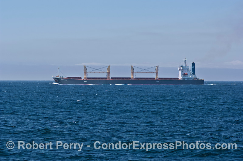 "Bulk carrier vessel ""Copper Queen."""