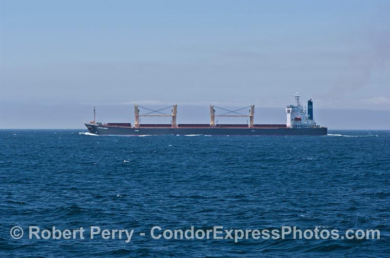 """Bulk carrier vessel """"Copper Queen."""""""