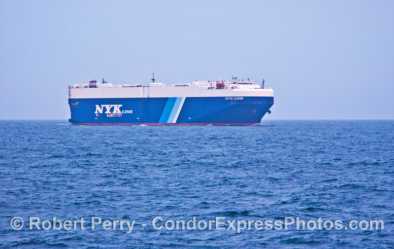 vessel car carrier Cetus Leader 2007 08-16 SB Channel--002