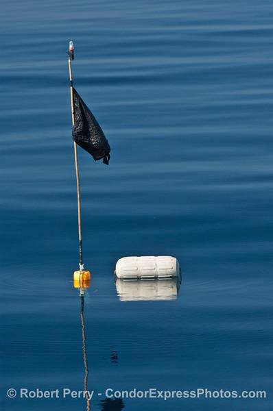 debris flag strobe float 2007 09-08 So Calif Bight-002