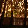 Backyard Light