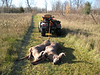8 point buck and 4 point behind 4-wheeler.