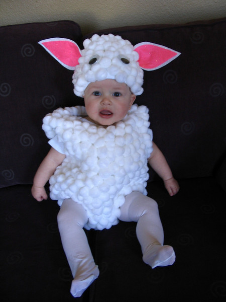 Abby's baby girl, Ana.  She is the cutest little lamb around!