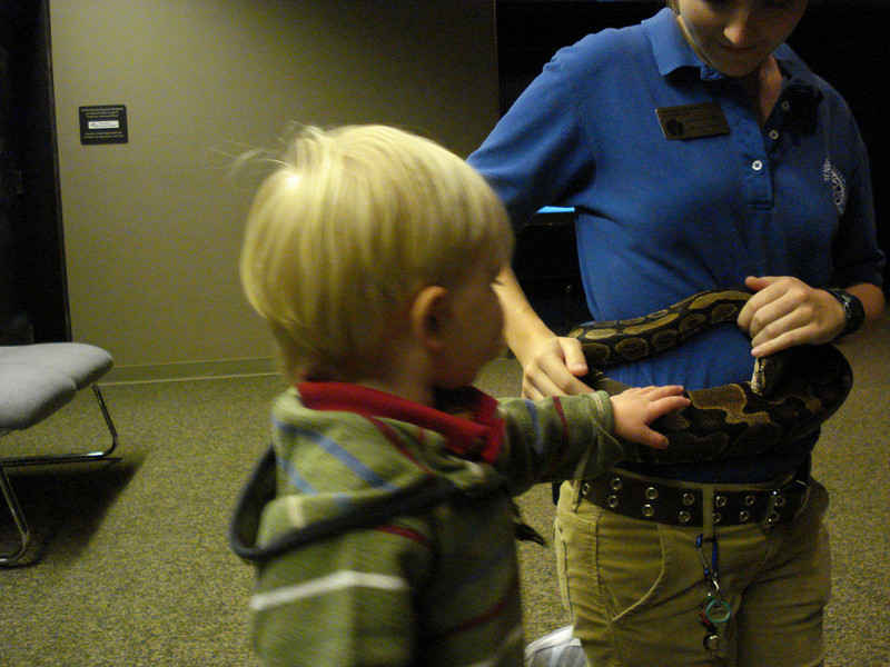 Aaron pets his first snake at the TN Aquarium.