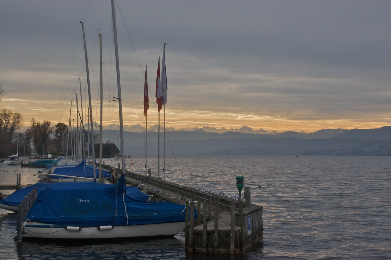 No boats on the lake today • Sailing boats sit moored by the Eastern shore of Lake Zurich (Zurichsee).