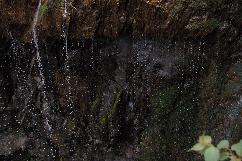 Curtain of drops