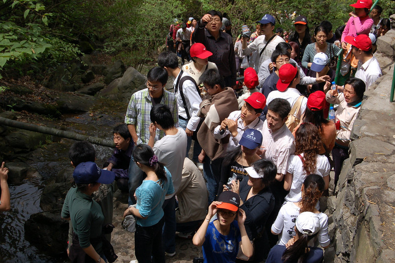 More tour groups