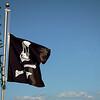 A Happier Pirate