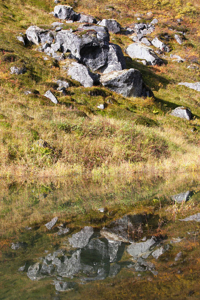 Hatcher Pass granite reflects in a slow spot in Archangel Creek.