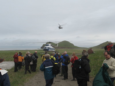 helicopters landing - Andrew Gossen