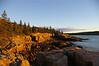 Dawn, Acadia National Park