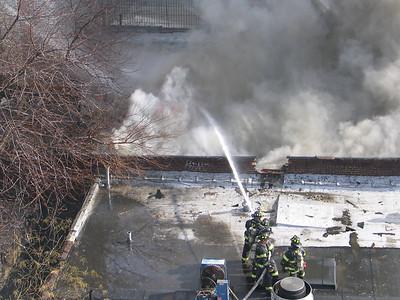 Bronx 2-11-07 010