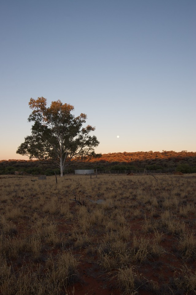 Sunset over Old Angas Downs • The sun sets and the moon rises over Old Angas Downs cattle station, about 220km south-west of Alice Springs.