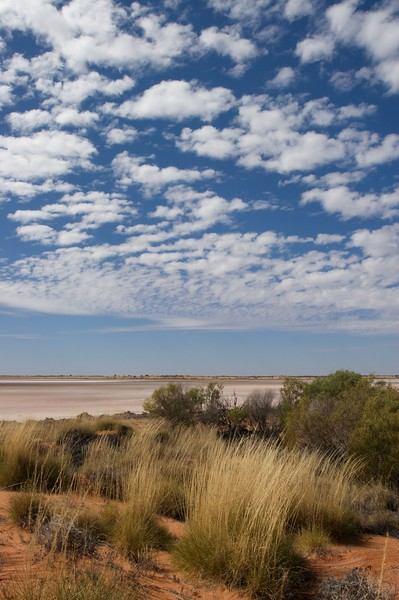 A dry lake • A dry lake just south of the Lasseter Highway in the Northern Territory, surrounded by desert shrubs and grasses.
