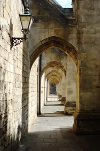 10 - Flying Buttresses of Winchester Cathedral - Liz Greenberg