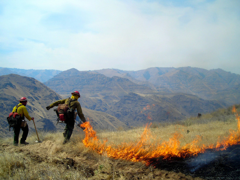 Mal lays down fire with Cim running the burn operation.  Winds were mostly in our favor and we didn't have much slopover.