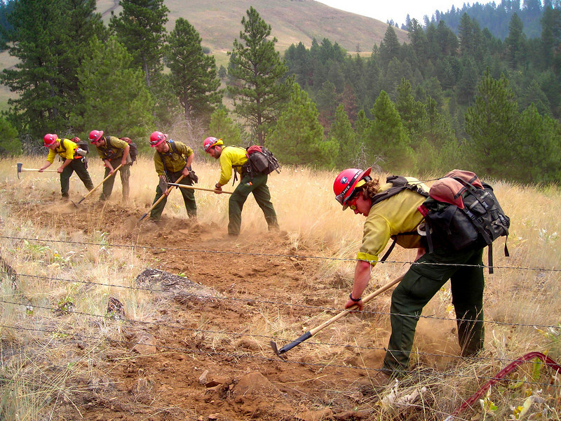 Left without an assignment for a day, our crew beefed up the fireline on our ridgeline, building smaller breaks around old structures in the area and limbing up the trees.