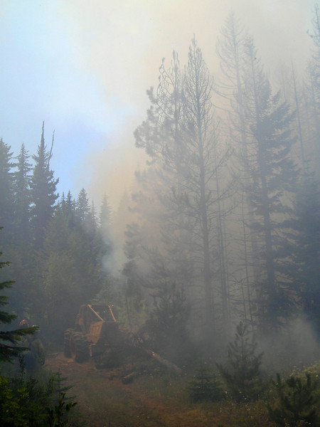 """We were helped on our backburn by a logging skidder turned fire engine, called a """"skidgine"""" on the fireline.  This equipment saved us a lot of work by pushing whole trees out of our fireline for us."""