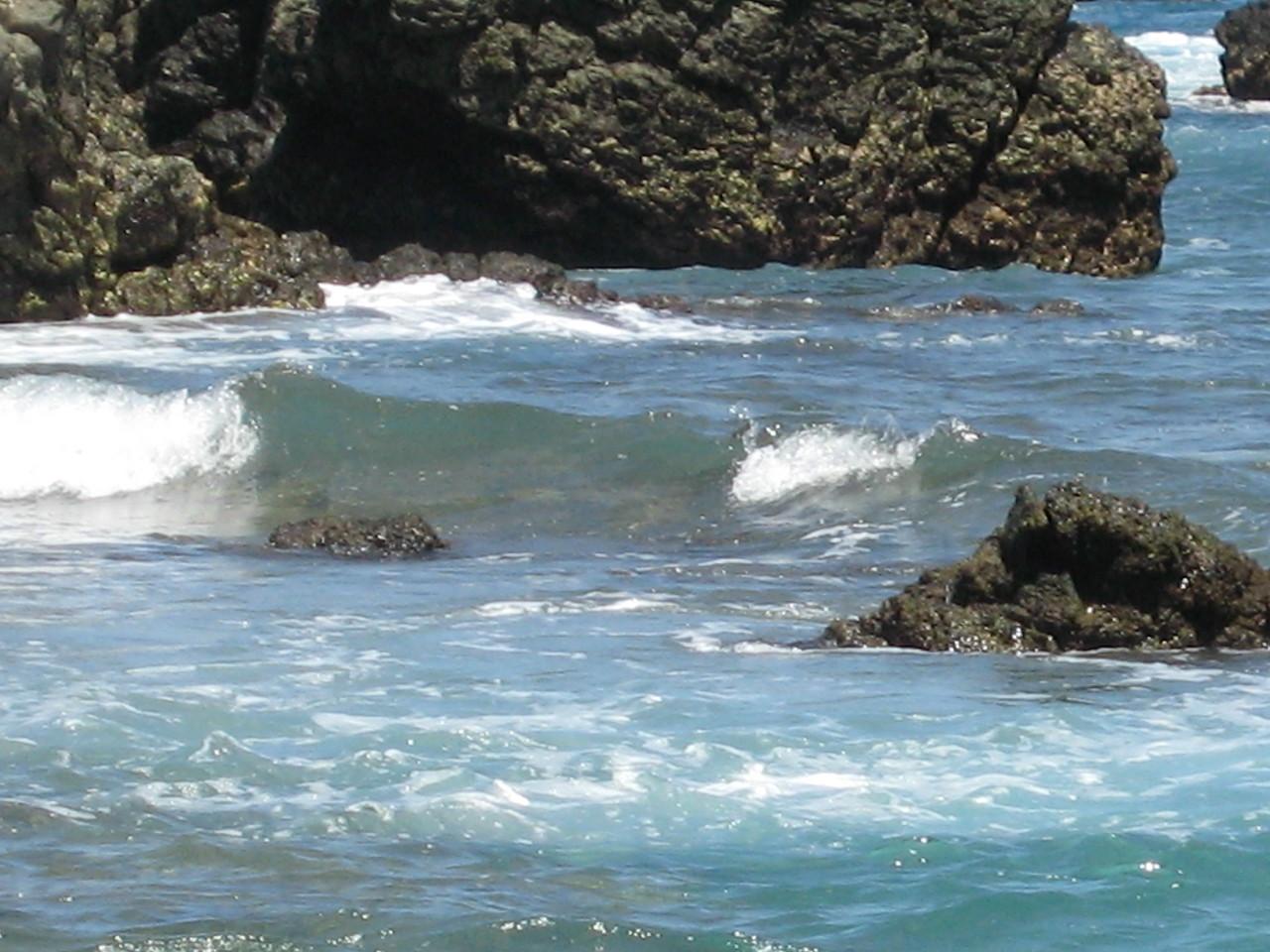 costarica 1113