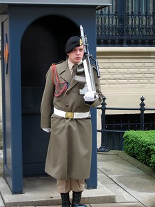 Guard at the Grand Ducal Palace, official residence of the Grand Duke of Luxembourg