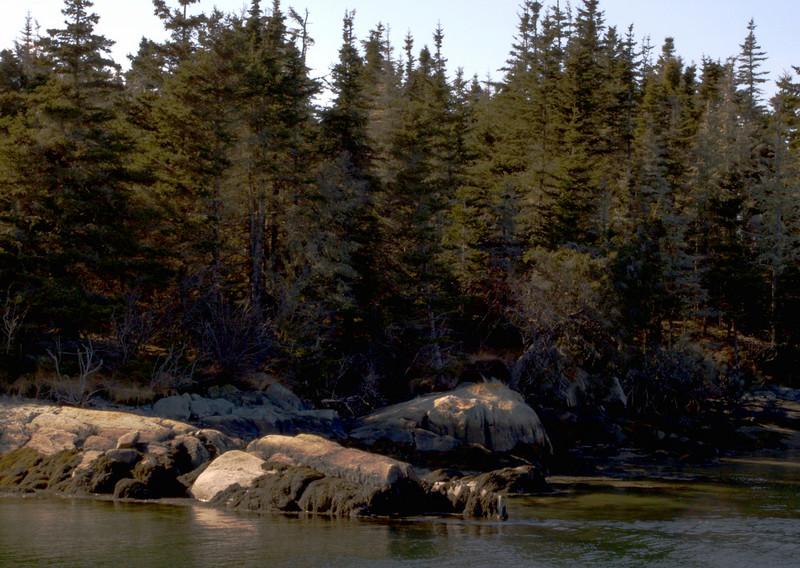 Part of the shore line.
