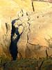 West Side 13 - Sandstone Crevices. Nova Scotia's sandstone is the hardest sandstone in the world.