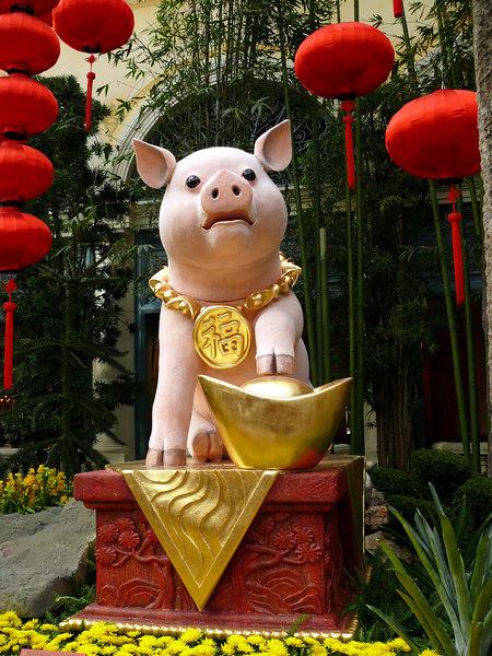 02-07 Las Vegas - Ballagio Chinese New Year