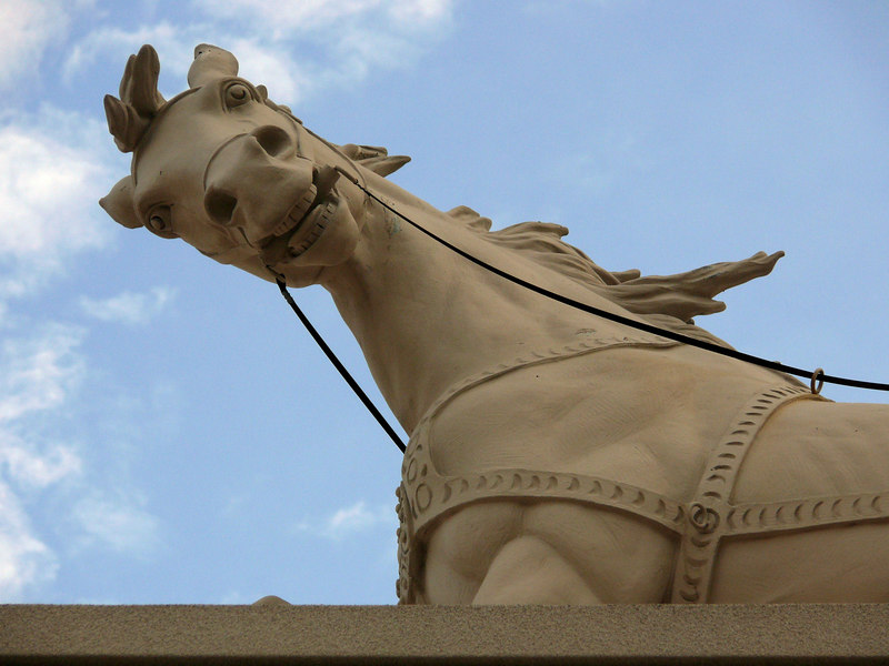 02-07 Las Vegas - Horse
