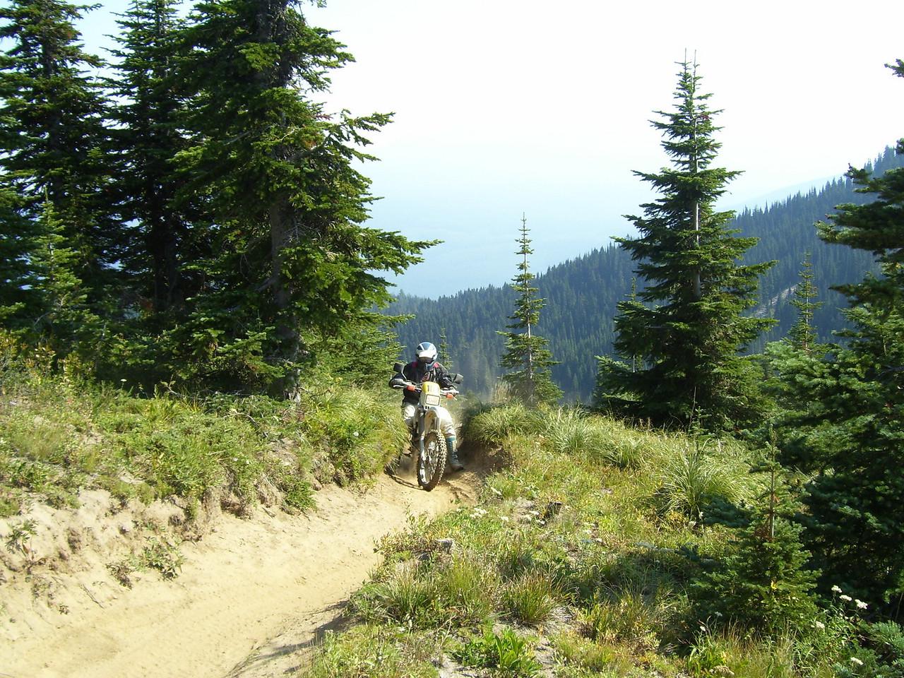 Charlie on 118, Hamilton Buttes trail