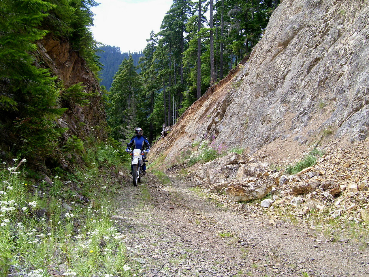 Sylvia riding up the unmaintained FS road we saw from across the valley.
