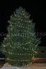 Newburgh Rec Center Tree