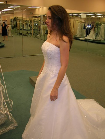 KristiAnne Wedding Dress Jan 2007
