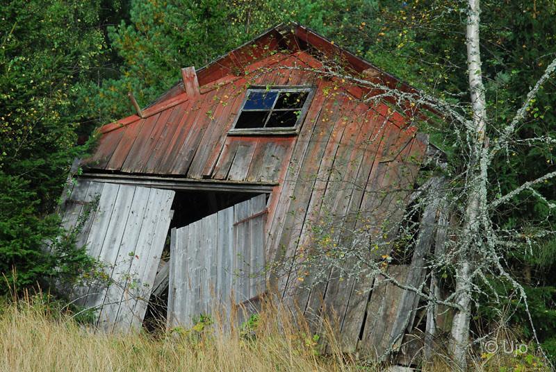 En bätttre beg lada på Husön, gamla husrester vittnade om tidigare aktivitet.