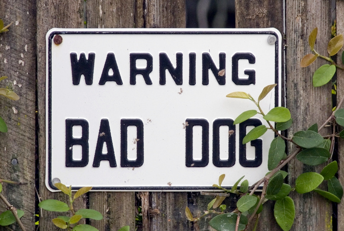 "03-25-07 Bad Dog   <br /> <br /> This sign just made me laugh! Not Beware Of Dog, but ""Bad Dog"". Ha!"