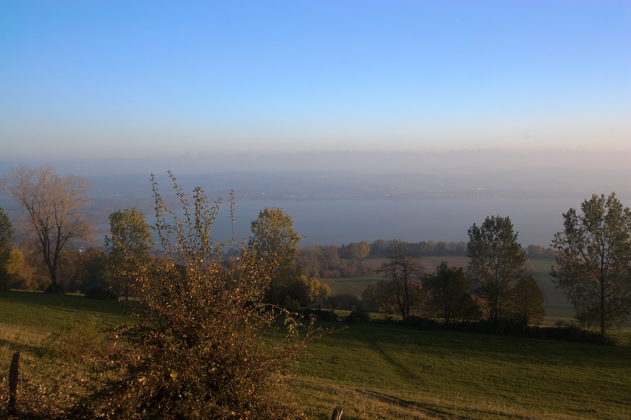 From the top of Mont Vully • Looking south-east from the summit of Mont Vully towards the Lac de Morat (Murtensee).